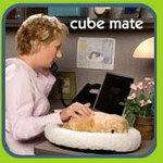 Cubemate