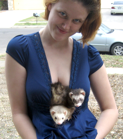 Nothing says 'you're just getting a handshake tonight' quite like ferrets.