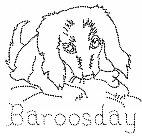 Baroosday_flipped