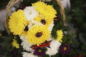Pupflowers_4