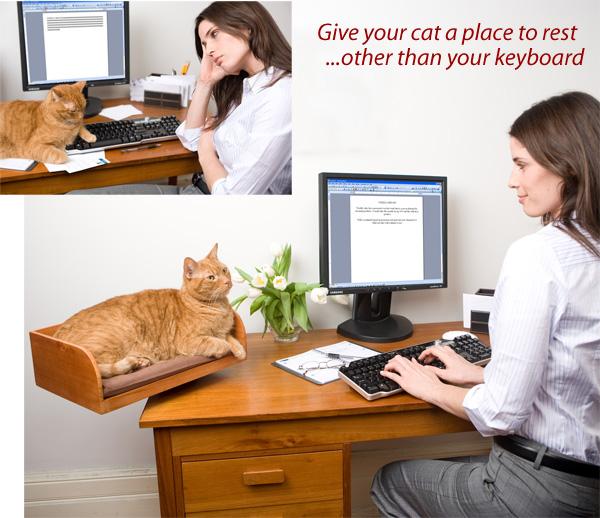 Katzen (9). Tierarzt Dr. Höch - HR-Sendungen