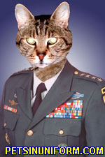 Lick that fur, soldier! You're a disgrace to this cat's Army!